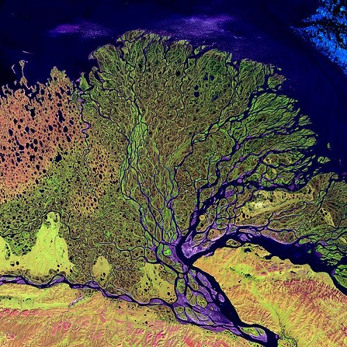 Delta of the Lena River in the photo from space