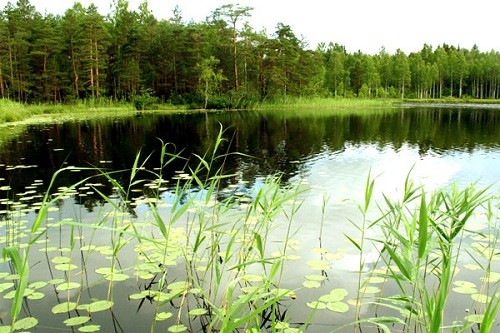 Lake Brosno Most famous anomalous zones of Russia