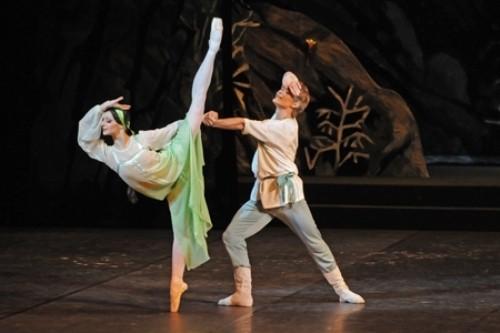 Ballet 'Stone Flower'
