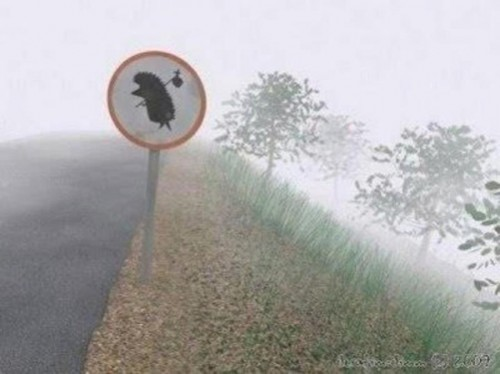 Hedgehog in the Fog, 1975 road sign