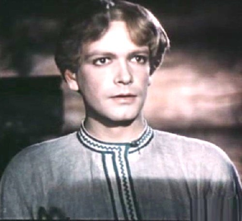 Vladimir Druzhinnikov as Danila master. The Stone Flower 1946 Soviet full-length fantasy film directed by Aleksandr Ptushko