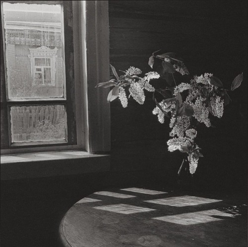 Galina Lukyanova. From the series 'House-1. 1981-1982'