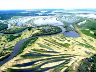 Russian natural phenomenon Great Vasyugan mire 5