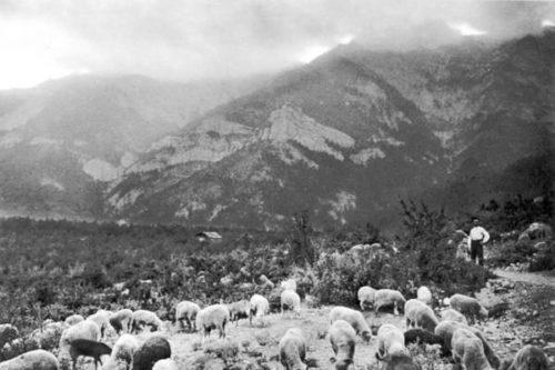 In the mountains near Yalta