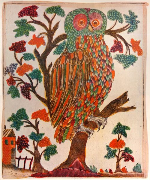 Splint. Owl. Early 19th century