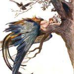Bird Sirin