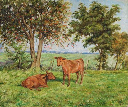 Calves, II quarter of the twentieth century