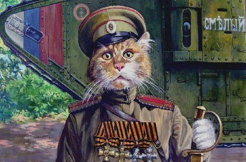Making History Russian Cat Timofei