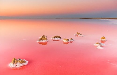 Beautiful Pink Lake Koyashskoe on the Kerch Peninsula in Crimea