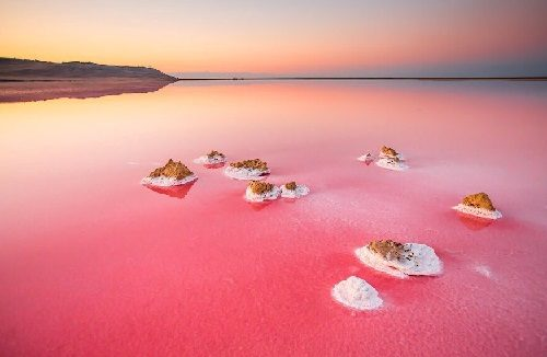 Fabulous Koyashskoe Pink Lake on the Kerch Peninsula in Crimea