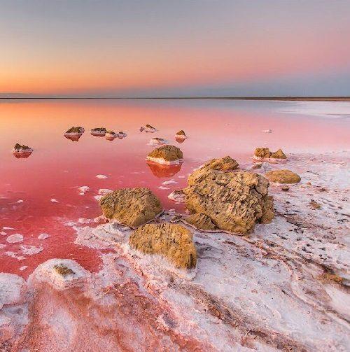 Photographer Sergey Anashkevich. Pink Salt Lake Koyashskoe