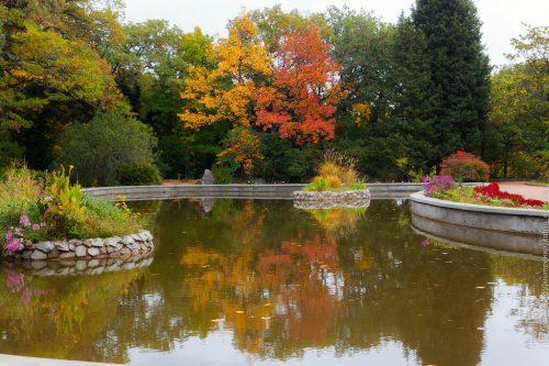 Park Montedor. Nikitsky Botanical Garden