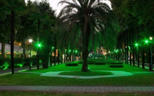 Park in the evening