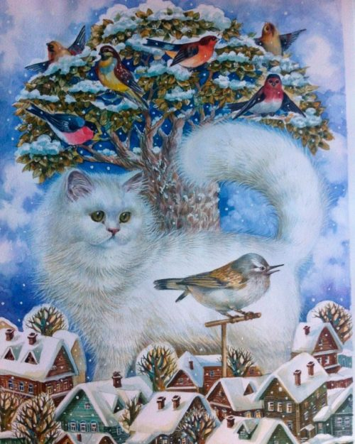 White fluffy cat and birds