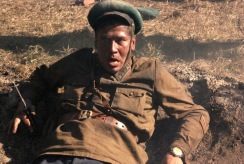 In the film Brest Fortress