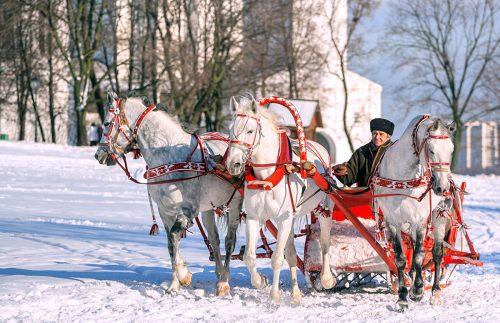 Three horses in Kolomenskoye