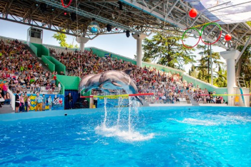 Big Sochi Dolphinarium