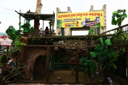 Crocodile farm in Anapa