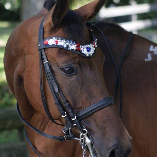 Forehead horse jewelry
